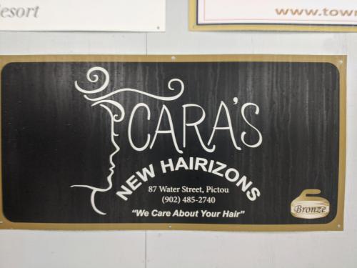 Caras New Horizons